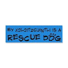 xolo_bumper_rescuedog Car Magnet 10 x 3