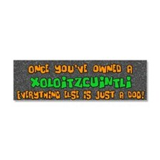 xolo_bumper_everythingelse Car Magnet 10 x 3