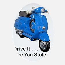 drive-it-stole-it-white Oval Ornament