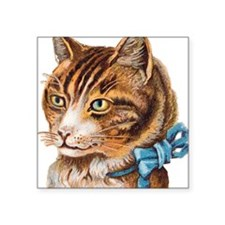 "cat-5 Square Sticker 3"" x 3"""