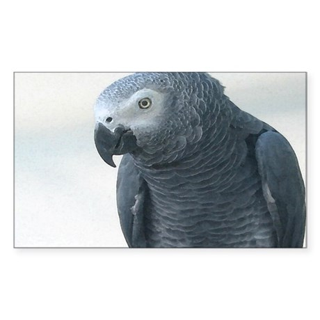 Grey Parrot Rectangle Sticker