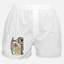 afganistan-101st-airborne-v Boxer Shorts
