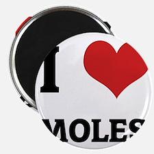 MOLES Magnet