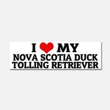 NOVA SCOTIA DUCK TOLLING RETRIEV Car Magnet 10 x 3
