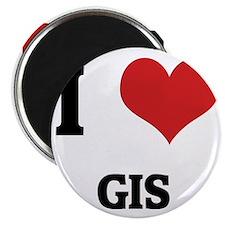 GIS Magnet