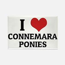 CONNEMARA PONIES Rectangle Magnet