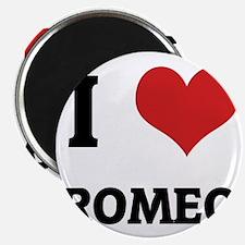 ROMEO Magnet