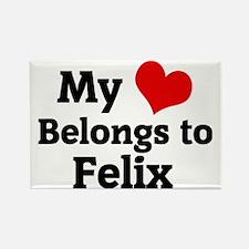 Felix Rectangle Magnet