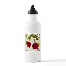 pomegranates Water Bottle