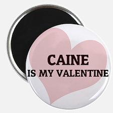 CAINE Magnet