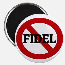 FIDEL Magnet
