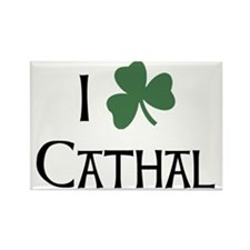 shams__Cathal_A Rectangle Magnet