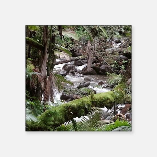 "Rainforest Stream Square Sticker 3"" x 3"""