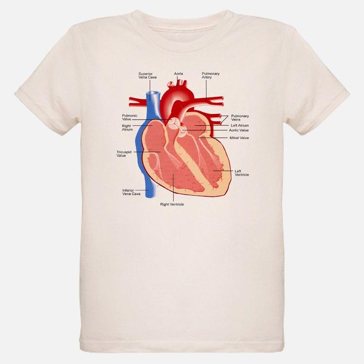 Human Heart Anatomy T-Shirt