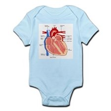 Human Heart Anatomy Infant Bodysuit