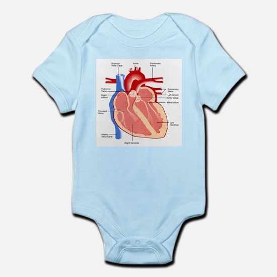 Human Heart Anatomy Infant Bodysuit