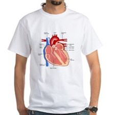 Human Heart Anatomy Shirt