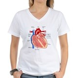 Anatomy Womens V-Neck T-shirts