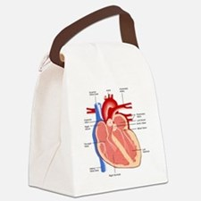 Human Heart Anatomy Canvas Lunch Bag