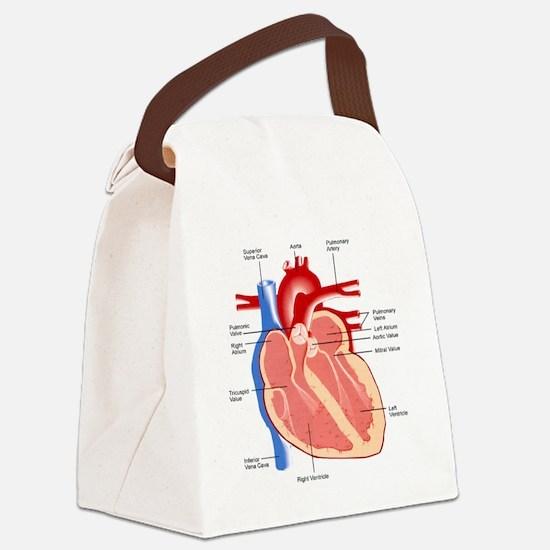 Human Heart Anatomy Canvas Lunch Bag