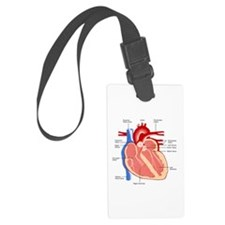 Human Heart Anatomy Luggage Tag