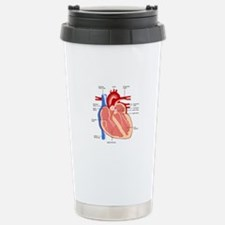 Human Heart Anatomy Travel Mug