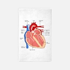 Human Heart Anatomy 3'x5' Area Rug