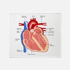 Human Heart Anatomy Throw Blanket