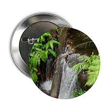 "Tropical Stream 2.25"" Button"