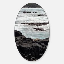 Ocean07 Decal