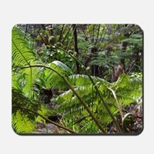 Rainforest Ferns Mousepad