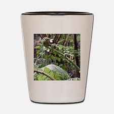 Rainforest Fern Shot Glass