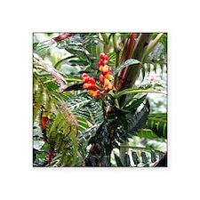 "Tropical Flowers Square Sticker 3"" x 3"""