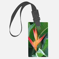Bird of Paradise Luggage Tag