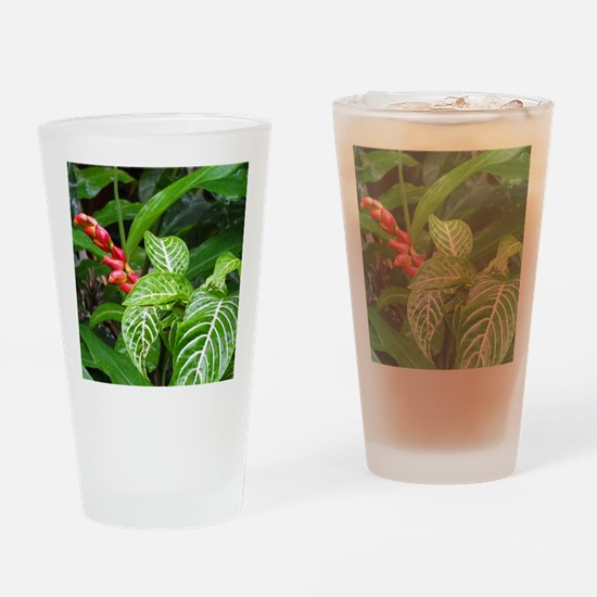 Tropical Flower Drinking Glass