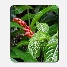 Tropical Flower Mousepad