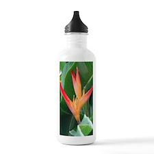 Bird of Paradise Water Bottle