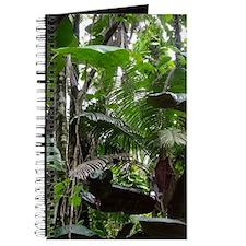 Tropical Rainforest01 Journal