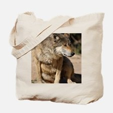 Mexican Wolf Portrait Tote Bag