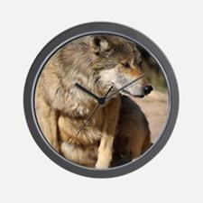 Mexican Wolf Portrait Wall Clock