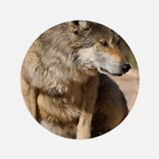 "Mexican Wolf Portrait 3.5"" Button"