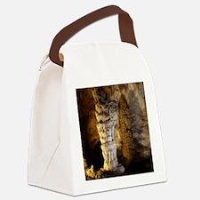 Carlsbad Caverns Canvas Lunch Bag