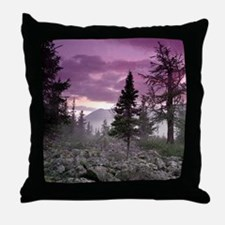 Beautiful Forest Landscape Throw Pillow