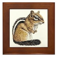 Chipmunk Cutie Framed Tile