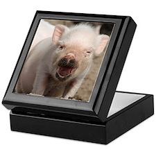 Cute Piglet Keepsake Box