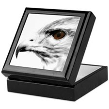 Raptor Keepsake Box