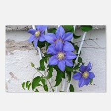 clematis cropped Postcards (Package of 8)