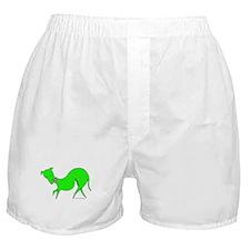 Green Prissy Boxer Shorts