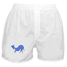 Purple Prissy Boxer Shorts