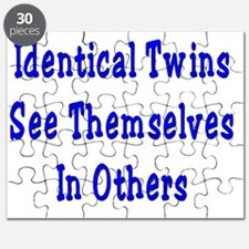 Identical Twins Puzzle